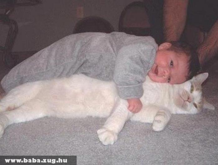 Cirmi cicával