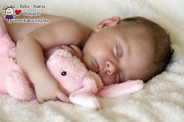 Alvás a nyuszival