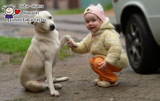 Pacsi a kutyussal