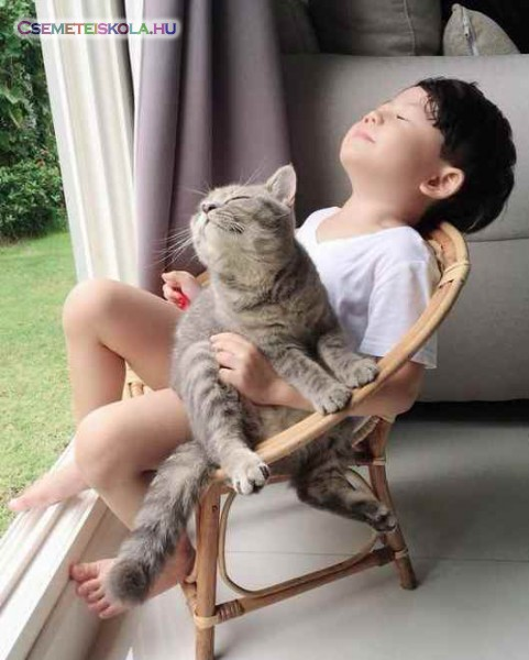 Napon, cicával