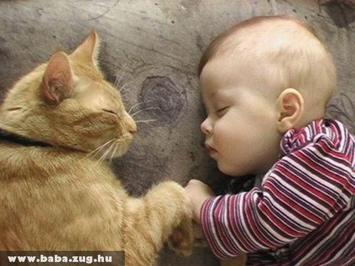 Közös alvás