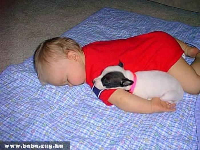 Pihenés a kutyussal