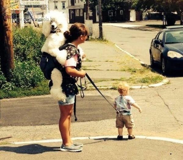 Gyerek-póráz, kutyacsősz