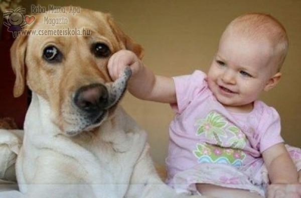 Baba és kutyus ismerkedik :)