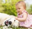 Barátkozás a kutyussal