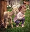 Bárányos baba