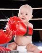 A kis boxoló