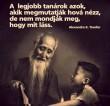 A legjobb tanárok :)